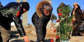 Фото с места события собственное. Возложение цветов к могилам погибших военнослужащих. Автор фото: Антон Балашов. 5 из 8